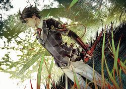 1boy black_hair blue_eyes double-breasted dutch_angle grass horikawa_kunihiro male_focus profile sheath touken_ranbu tree xiling