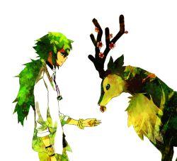 1boy bracelet flower green_hair jewelry milycat n_(pokemon) necklace pokemon pokemon_(game) pokemon_bw ponytail sawsbuck tagme