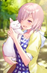 1girl blush carrying cat eyebrows_visible_through_hair fate/grand_order fate_(series) hair_over_one_eye haru_(hiyori-kohal) no_glasses one_eye_closed pink_hair purple_eyes shielder_(fate/grand_order) short_hair short_sleeves smile solo white_cat