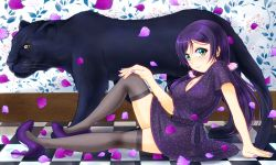 1girl breasts cleavage flower green_eyes highres hiro9779 long_hair love_live!_school_idol_project low_twintails panther purple_hair scrunchie solo thighhighs toujou_nozomi twintails