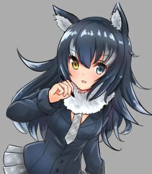000_(jicasoe) 1girl animal_ears between_breasts black_hair blue_eyes blush breasts fur_collar grey_background grey_wolf_(kemono_friends) heterochromia highres kemono_friends long_hair looking_at_viewer multicolored_hair necktie necktie_between_breasts open_mouth pen simple_background skirt solo two-tone_hair wolf_ears yellow_eyes