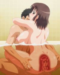 1boy 1girl animated animated_gif anus areolae ass black_hair blush breasts brown_eyes brown_hair censored cowgirl_position cross_section distance father_and_daughter hhh_triple_ecchi incest large_breasts miyuki_(hhh) nipples nude otou-san_(hhh) puffy_nipples sex smile stitched straddling tagme vaginal x-ray