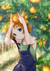 1girl bangs blue_bow blue_eyes bow braid casual closed_mouth day denim dirt_road food fruit girls_und_panzer grabbing green_shirt hair_bow head_tilt highres looking_at_viewer orange orange_hair orange_pekoe outdoors overalls shirt short_hair smile solo standing strap_slip tank_top tied_hair tree twin_braids upper_body yaoyasan