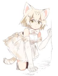 1girl :/ animal_ears bare_shoulders blonde_hair bow bowtie breast_pocket cat_ears cat_tail clenched_hand elbow_gloves expressionless eyebrows eyebrows_visible_through_hair frilled_skirt frills gloves hair_between_eyes highres kemono_friends kneeling looking_at_viewer multicolored_hair nikotamu pocket sand_cat_(kemono_friends) shirt shoe_ribbon short_hair sketch skirt solo source_request streaked_hair striped_tail tail tareme white_background white_shirt yellow_eyes