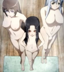 3girls breasts brown_hair gotou_matabei highres hobby_japan hyakka_ryouran_samurai_girls large_breasts loli long_hair multiple_girls nipples nude purple_eyes red_eyes sanada_yukimura_(hyakka_ryouran) standing stitched tokugawa_sen