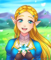 1girl blonde_hair blue_eyes braid breasts burbur day eyebrows face fingerless_gloves flower french_braid gloves grass hair_ornament hairclip half-closed_eyes happy highres looking_at_viewer open_mouth outdoors outside pointy_ears princess_zelda sky smile solo solo_focus the_legend_of_zelda the_legend_of_zelda:_breath_of_the_wild thick_eyebrows upper_body watermark web_address