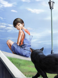 1boy cat child grass japanese male_focus original outdoors realistic sitting sky solo summer to1989