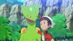 1boy 1girl animated animated_gif blaziken haruka_(pokemon) haruka_(pokemon)_(remake) pokemon sceptile swampert yuuki_(pokemon) yuuki_(pokemon)_(remake)