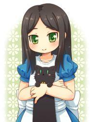 1girl alice:_madness_returns alice_(wonderland) black_hair cat dress green_eyes long_hair mizuno_mumomo tagme