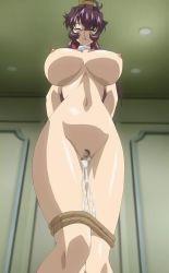 1girl bakunyuu_maid_gari bdsm bondage bound breasts censored female huge_breasts mogudan mosaic_censoring nude screencap shibari shirasaki_miwako yoshiten