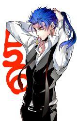 1boy adjusting_hair blue_hair fate/stay_night fate_(series) lancer long_hair mayuki_(ubiquitous) ponytail red_eyes solo tying_hair vest waistcoat