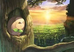 atelier_pocket beach bird cloud eyes_closed forest head_tilt lens_flare nature no_humans ocean owl pine_tree pokemon pokemon_(creature) pokemon_(game) pokemon_sm river rowlet shade sky solo sunrise tree