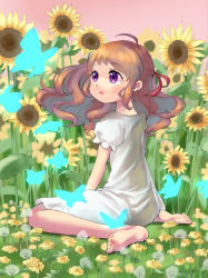 1girl ahoge barefoot brown_hair butterfly dress field flower flower_field long_hair original purple_eyes short_sleeves sitting solo sunflower sushineta wariza