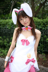 animal_ears apron bunny_ears character_request cosplay hinako photo source_request tray waitress