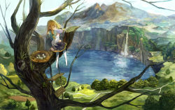 1girl animal_on_lap bird bird_nest blonde_hair chicken cliff dress egg hair_ribbon highres in_tree lake landscape long_sleeves mountain no_shoes original outdoors pantyhose payot plank ribbon rope_ladder scenery sitting sitting_in_tree solo tamu_(tamurarucaffe1226) tree tress_ribbon water waterfall white_legwear wide_sleeves