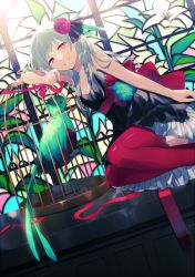 achiki bare_shoulders bird birdcage cage character_request grey_hair red_eyes skirt stained_glass thighhighs