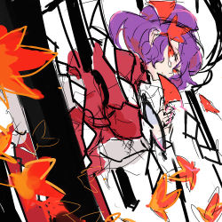 1girl commentary_request falling_leaves hair_ornament leaf looking_at_viewer lowres maple_leaf notoro purple_hair red_eyes rope shimenawa short_hair solo tears touhou yasaka_kanako