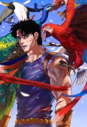 1boy bird black_hair blue_eyes emg_(christain) jojo_no_kimyou_na_bouken jonathan_joestar parrot peacock solo